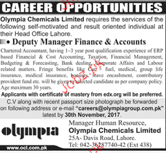 Deputy Manager Finance and Accounts Job Opportunity
