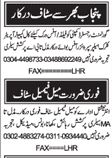 Office Staff required at Punjab 2017