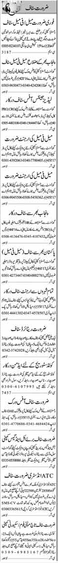 Miscellaneous Staff Wanted In Multan, Punjab