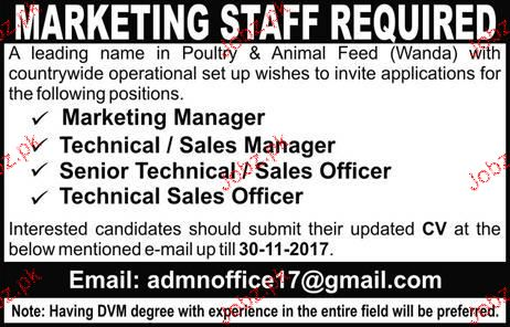 Marketing Manager, Technical / Sales Manager Job Opportunity