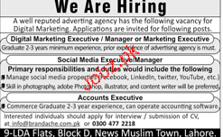 Digital Marketing Executives Job Opportunity
