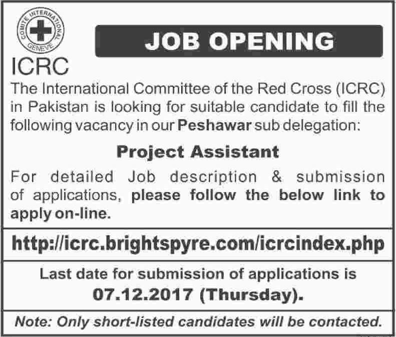 ICRC Jobs International Committee of the Red Cross 2017 2019