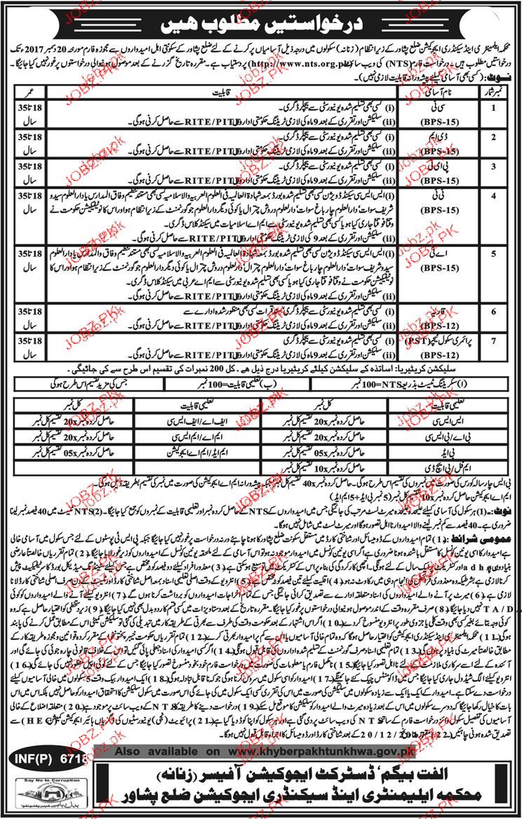 CT, DM, PET, TT and Primary School Teachers Job in Peshawar