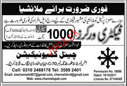 Factory Workers Job Opportunity