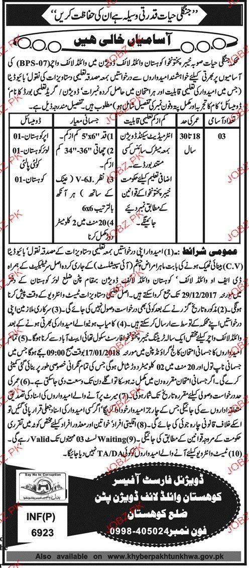Forest & Wildlife Department  Kohistan Division  Jobs