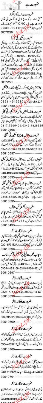Computer Operators, Security Guards Job Opportunity