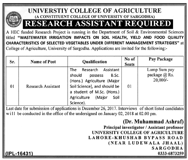 Research Assistant Jobs in University College of Agriculture