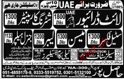 Light Drivers, Shuttering Carpenters, Steel Fixers Wanted