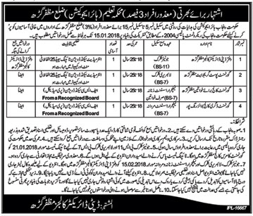 Junior Clerk, Library Clerk & Lecturer Assistant Jobs
