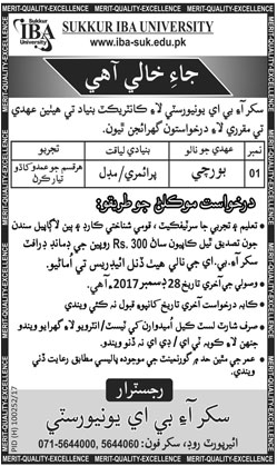 IBA University required Cook