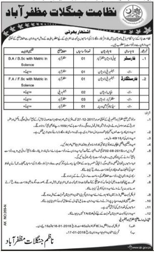 Forester required in Forest Department AJK