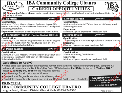 IBA Community College Jobs