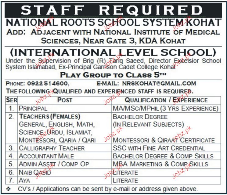 National Roots School System  Job