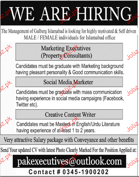 Marketing Executives Job Opportunity