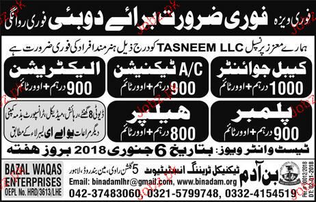 Cable Jointers, AC Technicians, Plumbers Job Opportunity