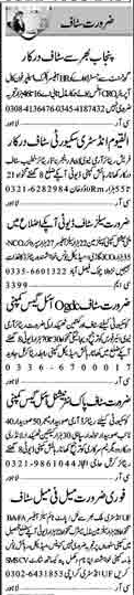 Male & Female Office & Marketing Staff required