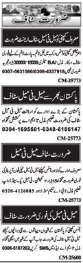 Male & Female Staff required in Islamabad