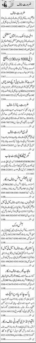 Office Staff required in Islamabad