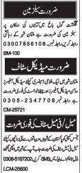 Salesman & Medical Staff Jobs in Multan