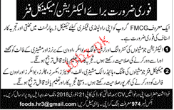 Electricians and Mechanical Fitters Job in FMCG Company