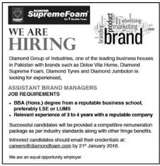 Diamond Foam Jobs 2018 for Assistant Brand Manager
