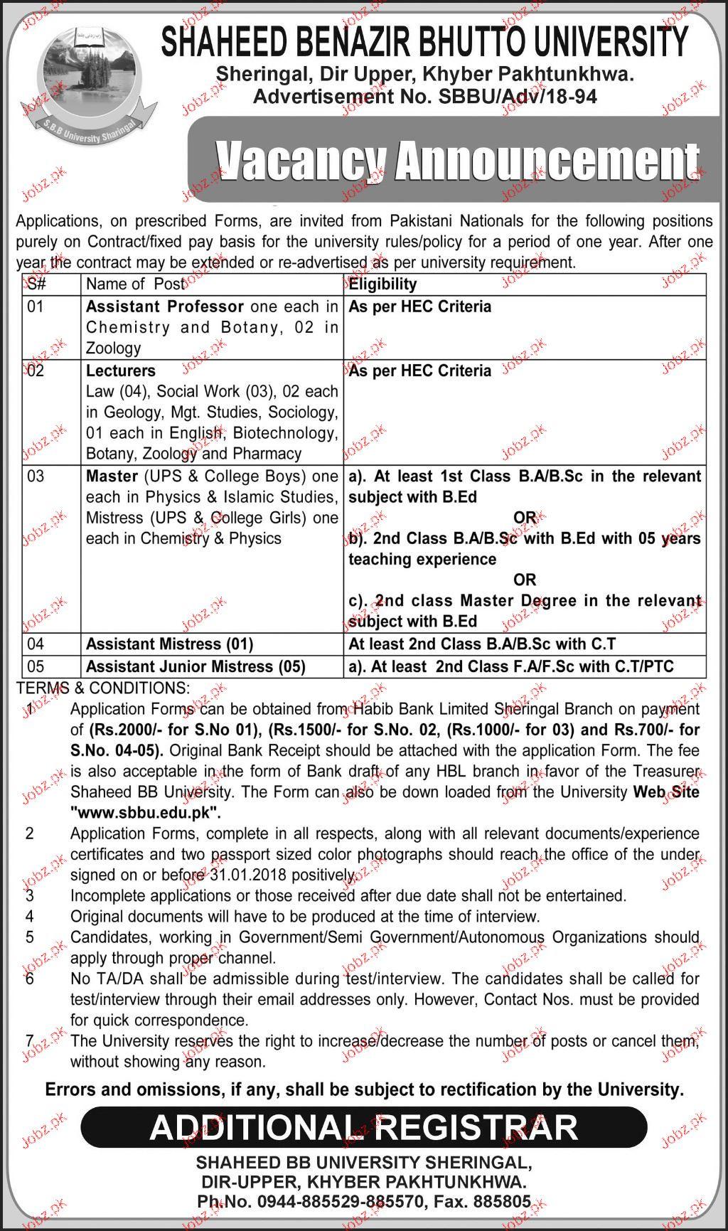 Shaheed Benazir University Peshawar Jobs