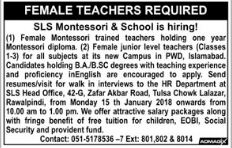 SLS Montessori & High School Jobs for Female Teacher
