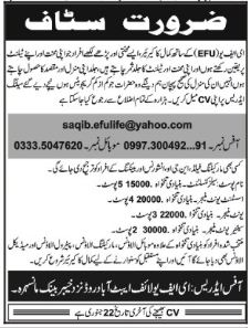 Efu Life Jobs 2018 in Mansehra
