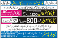Telecom Technicians and Telecom Helpers Job Opportunity