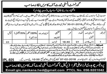 Government Institute of Commerce Job Opportunity