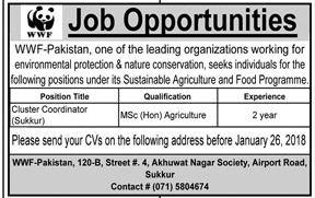 WWF Pakistan Need Cluster Coordinator In Sukkur