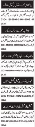 Male Female Staff Jobs Open in Multan