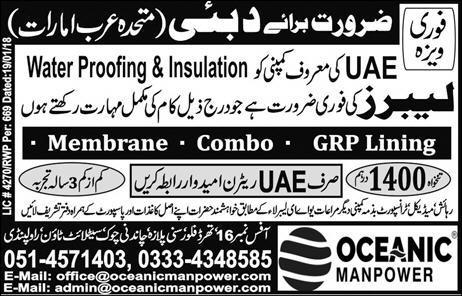 Labors Job in Dubai