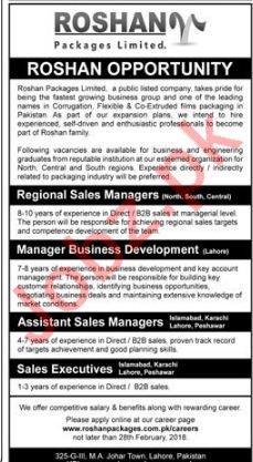 Roshan Packages Sales and Business Development Jobs