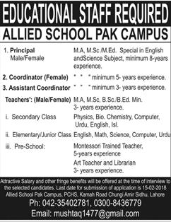 Male / Female Principal Job in Allied School