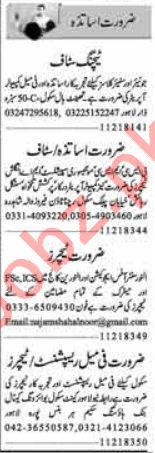 Teacher required in Faisalabad