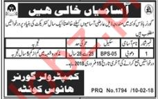 Washerman Jobs In Governer House Quetta