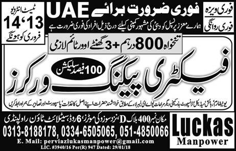 Factory Packing Workers Job Opportunity