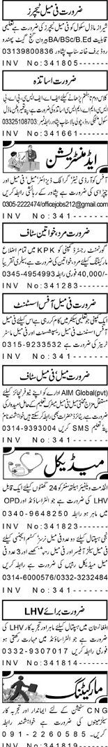Female Teachers, Office Coordinators Job Opportunity