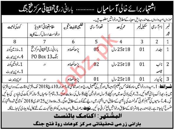 Barani Agricultural Research Station Fateh Jang Jobs 2018