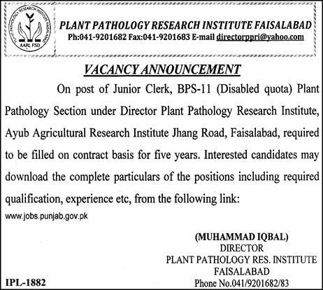 Plant Pathology Research Center Clerks Jobs