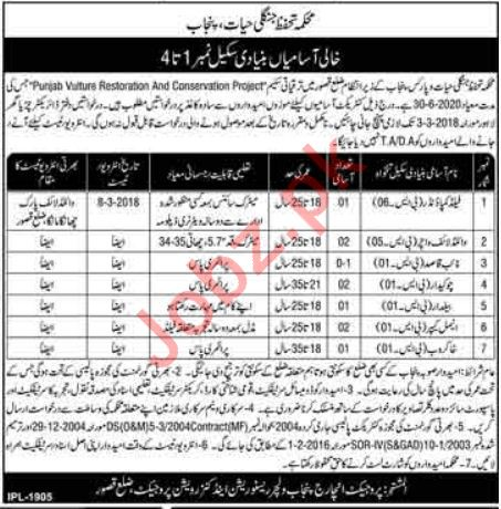Punjab Wildlife Department Kasur Jobs 2018