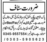Female Staff Job in Pak Shaheen Public School