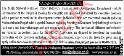 Planning & Development Department Lahore Jobs Executives