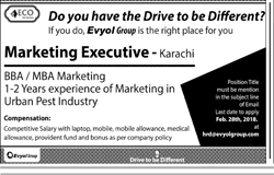Marketing Executives Job Opportunity