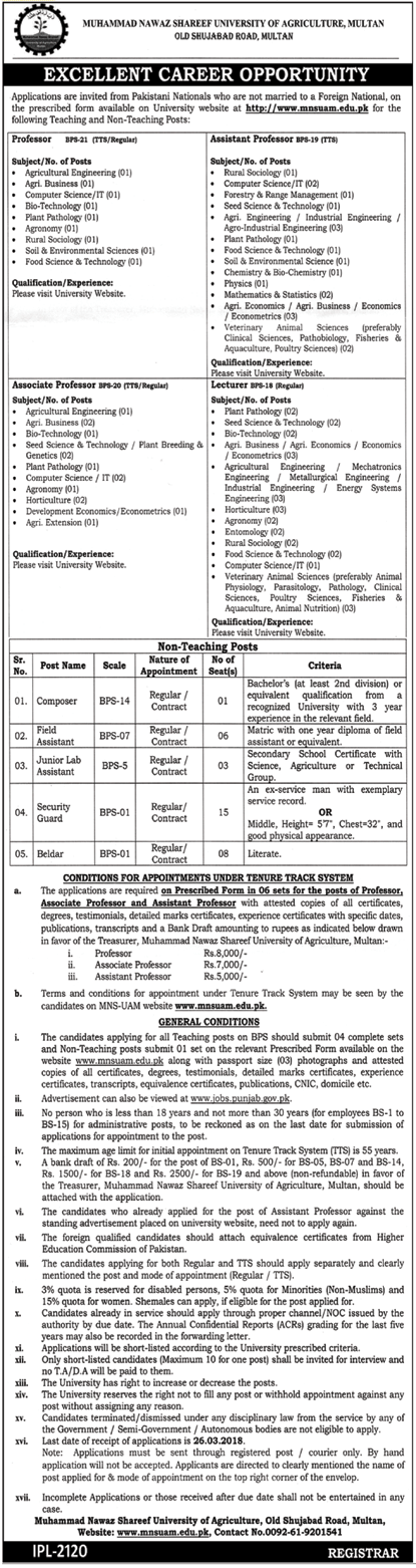 University of Agriculture MNSUAM Multan Jobs 2018
