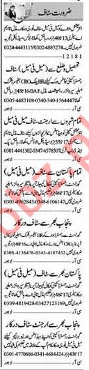 Security Staff & Office Staff Jobs in Lahore
