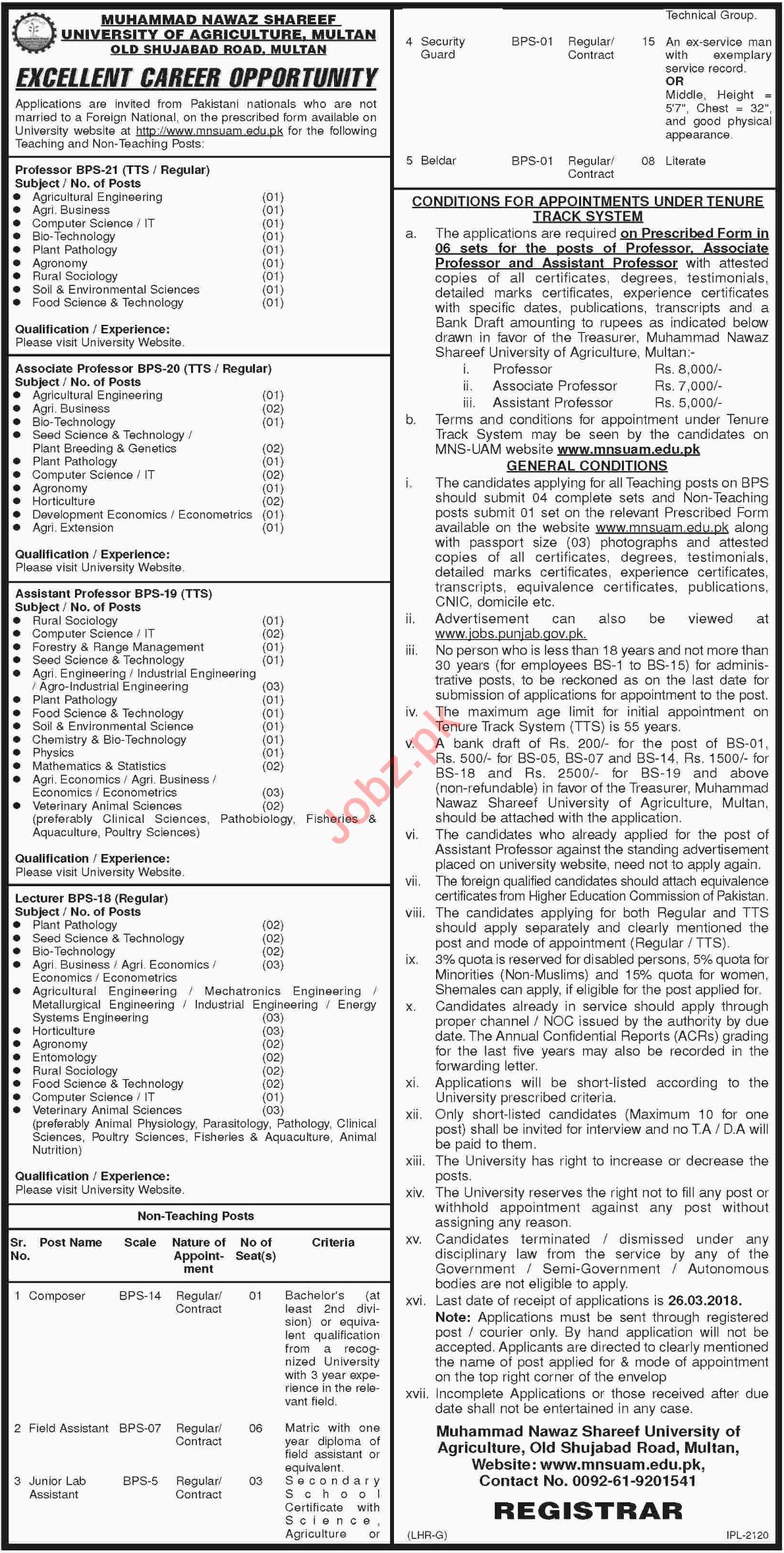 Muhammad Nawaz Shareef University of Agriculture Multan Jobs