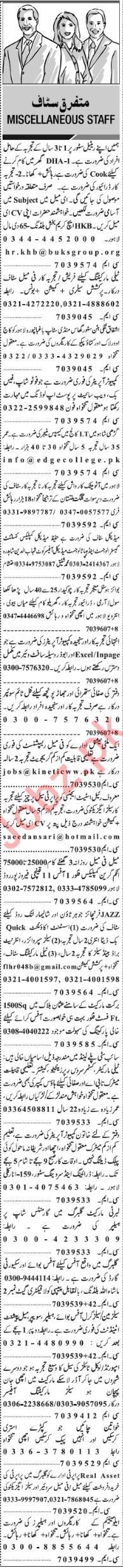 Male & Female Staff Jobs Open