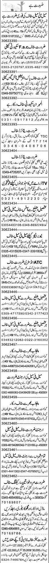 Security Guards, Security  Supervisors Job Opportunity